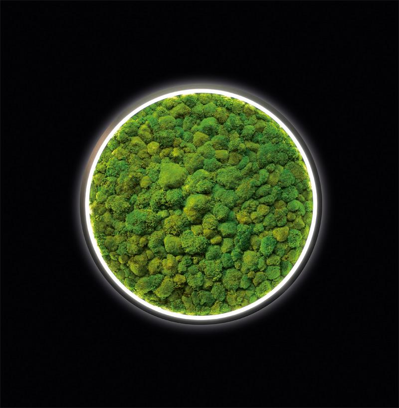 """""""Luce Verde Slim"""" von Sattler (Foto: Sattler)"""