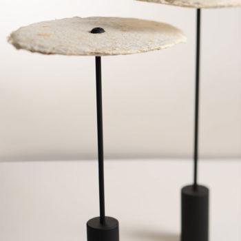 """""""Mycelium Lamps"""" von Nir Meiri"""